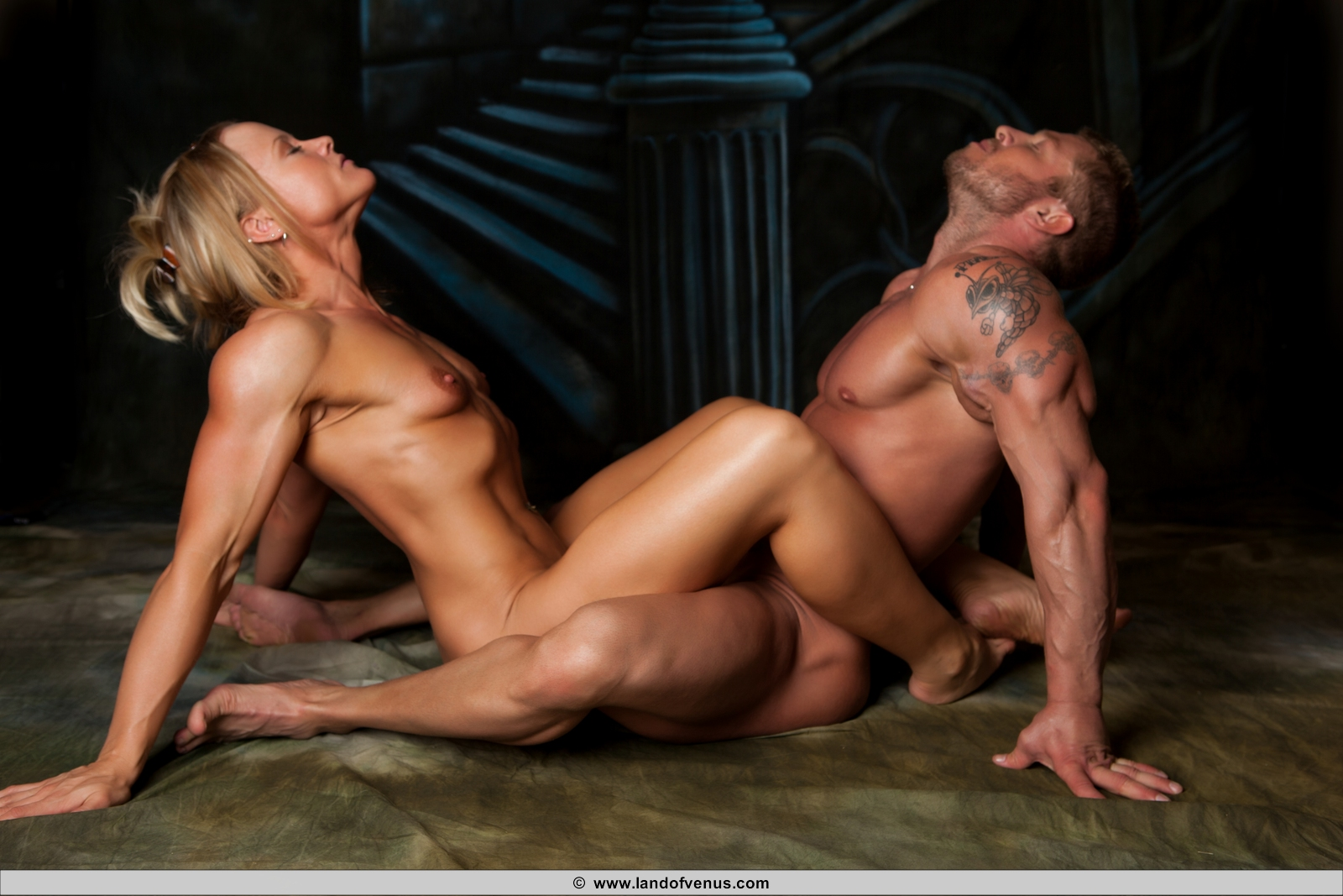 Female bodybuilder having sex 2  female bodybuilder having sex. Female Bodybuilder having sex